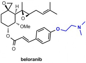 beloranib