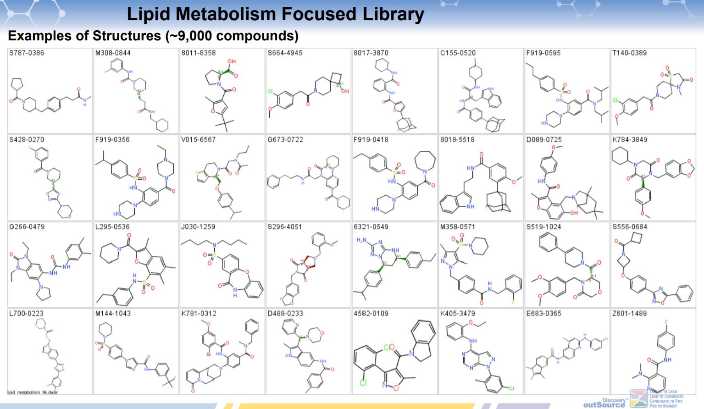 Lipid Metabolism Focused Library